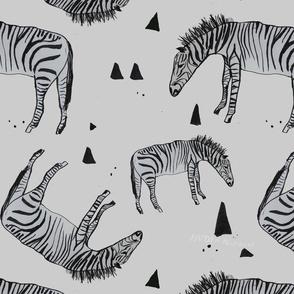 Zebras everywhere