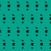 Maple leaves in silhouette on teal green