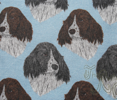 English Springer Spaniel faces - blue