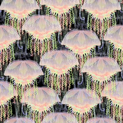 jellyfish on parade