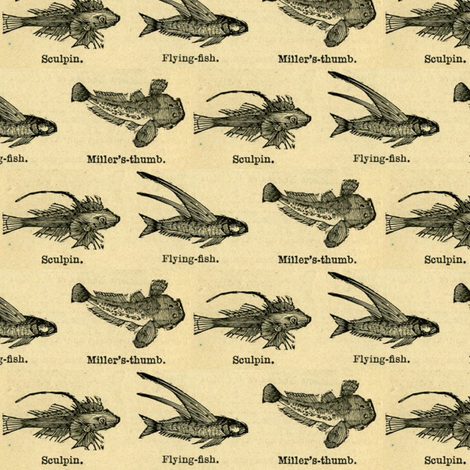 Fishing in the 1880's fabric by edsel2084 on Spoonflower - custom fabric