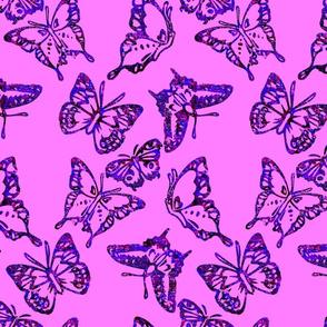 butterflyroads5