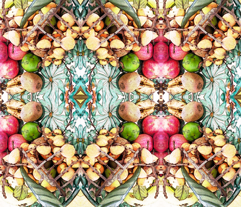 fruitista fabric by theaztecprincess on Spoonflower - custom fabric