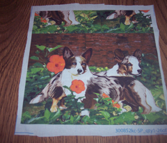 Rrrcardigan_corgi2_comment_144830_preview