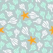 ditsea: starfish & seaweed