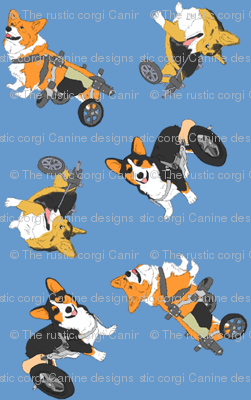 Corgi's on wheels small - blue