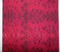 Red Snake Skin IV
