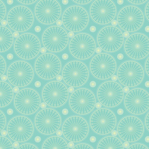 bicycle wheels and gears seafoam