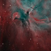 Rrrrorion_nebula_hoo_narrowband_with_fli_ml8300_shop_thumb