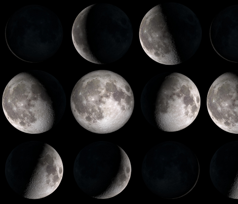 Final Frontier Collection ~ Phases of the Moon ~ Medium fabric by peacoquettedesigns on Spoonflower - custom fabric