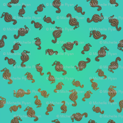 Little Copper Seahorses in Aqua Seas
