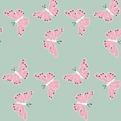 Rrboho_butterflies_shop_thumb