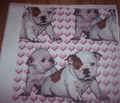 Rrrbulldog_babies_comment_144825_thumb