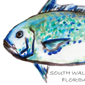 blue_fish_SOUTH_WALTON