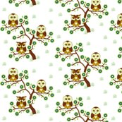 Rr3_sleepy_brown_owls_sitting_in_a_brown_tree_with_grass_shop_thumb