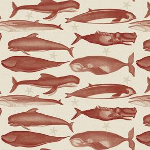 whales_burgundy