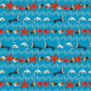 océan oh bleu S