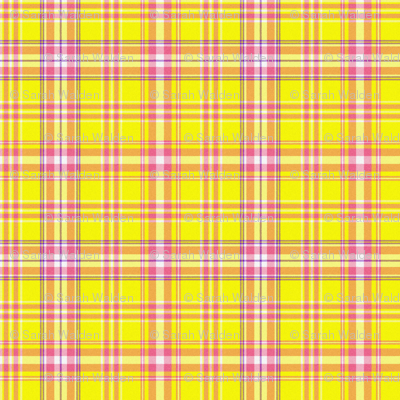 Abby Plaid