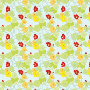 Nasturtiums Fresh Ditsy Petite