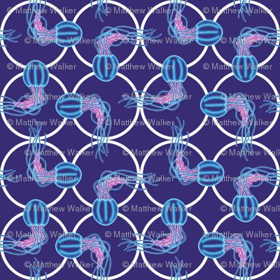 JellyFish_