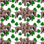 Rrirish_water_spaniel__with_shamrocks_seamless_shop_thumb