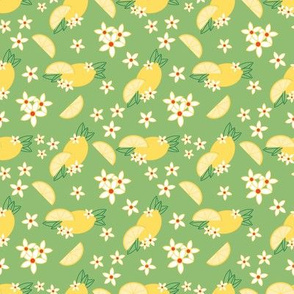 Lemonade Pattern 2