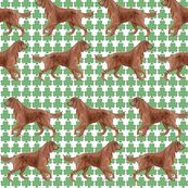 Rrrrirish_setter_shamrocks_shop_thumb