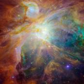 Orion nebla