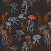 Deep Sea Jellyfish 2250