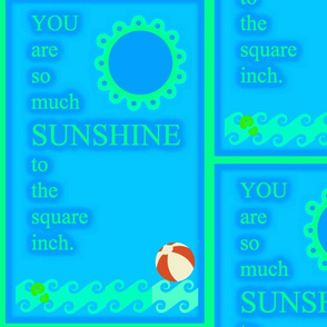 So Much Sunshine  - blue