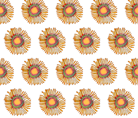 Flower Jelly fabric by wiccked on Spoonflower - custom fabric