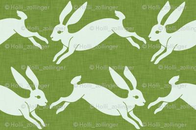 rabbit_spring