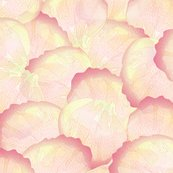 Rrrrose_petals_peach_2_shop_thumb
