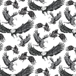 Eagles Pattern