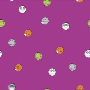 sleepy_nocturnal_big_dots_purple