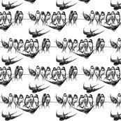 Rrrr1720_jpg_bird_on_wire_shop_thumb