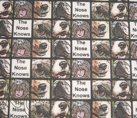 Dog Noses - The Nose Knows