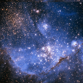 Infant Stars in theMagellanic Cloud