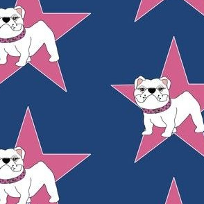Victoria the Bulldog is a Star!
