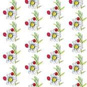 Rrrrbug_ladybugs_daisy_shop_thumb