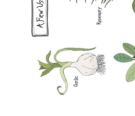 Anna's Herbs - Tea Towel fabric by alicecantrell on Spoonflower - custom fabric