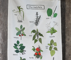 Anna's Herbs - Tea Towel