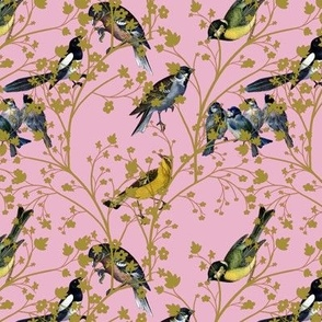 Georgian birds on pink