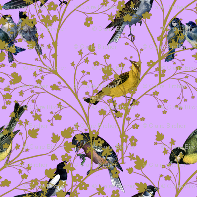 Georgian Birds on purple