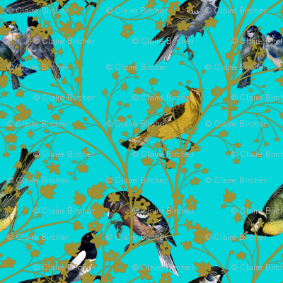 Turquoise Bird Wallpaper Georgian Birds on Turquoise