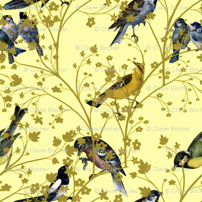 Georgian Birds on yellow