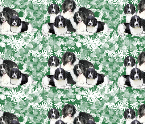 Landseer Newoundlands In The Garden fabric by dogdaze_ on Spoonflower - custom fabric