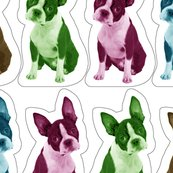 Rrboston_terrier_pillow_shop_thumb