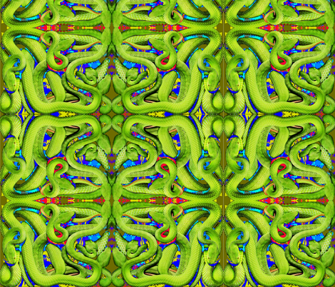 Deadly Snakes In A Box fabric by whimzwhirled on Spoonflower - custom fabric