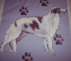Borzoi and Pawprints